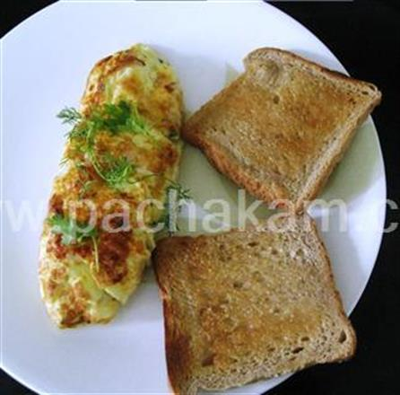Cheese Onion Omelet