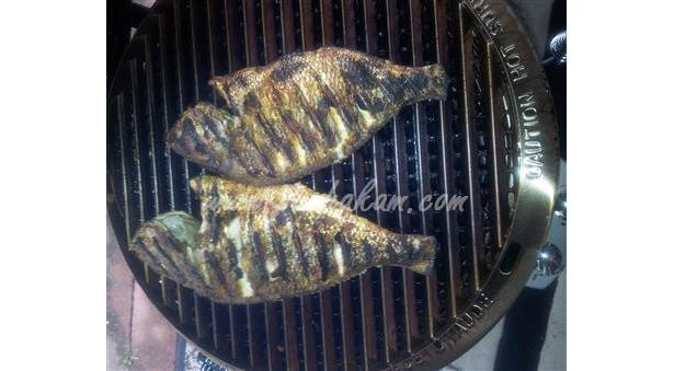 Easy Tasty Healthy Grilled Fish