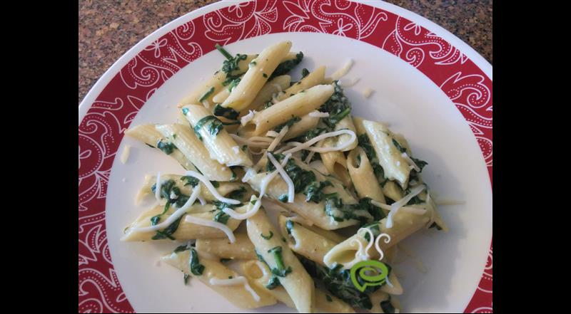 Pasta In White Sauce With Spinach