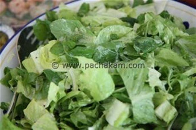 Salad Greens With Citrus Yogurt Dressing